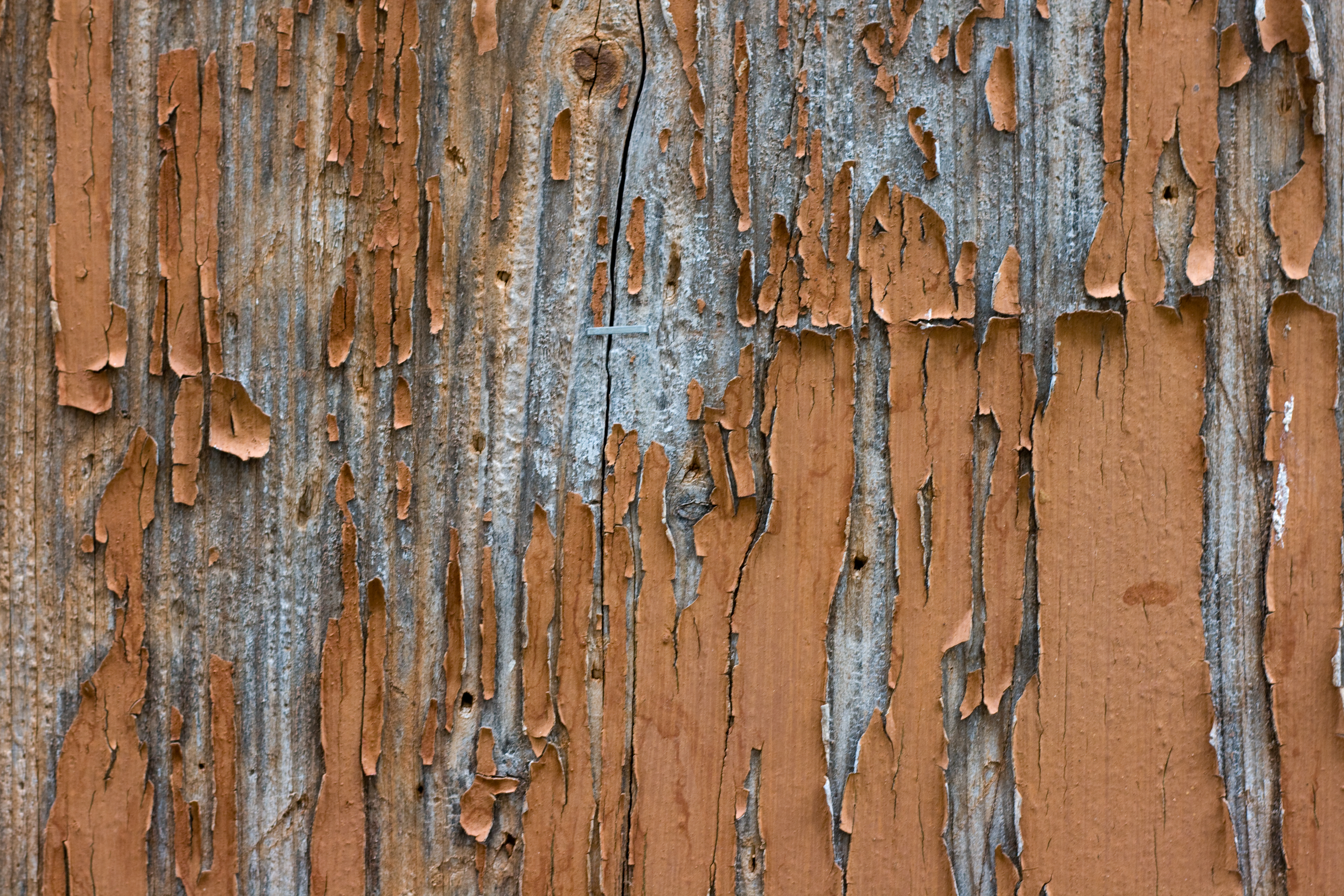 4 hi res grunge textures of cracked paint High Resolution Textures