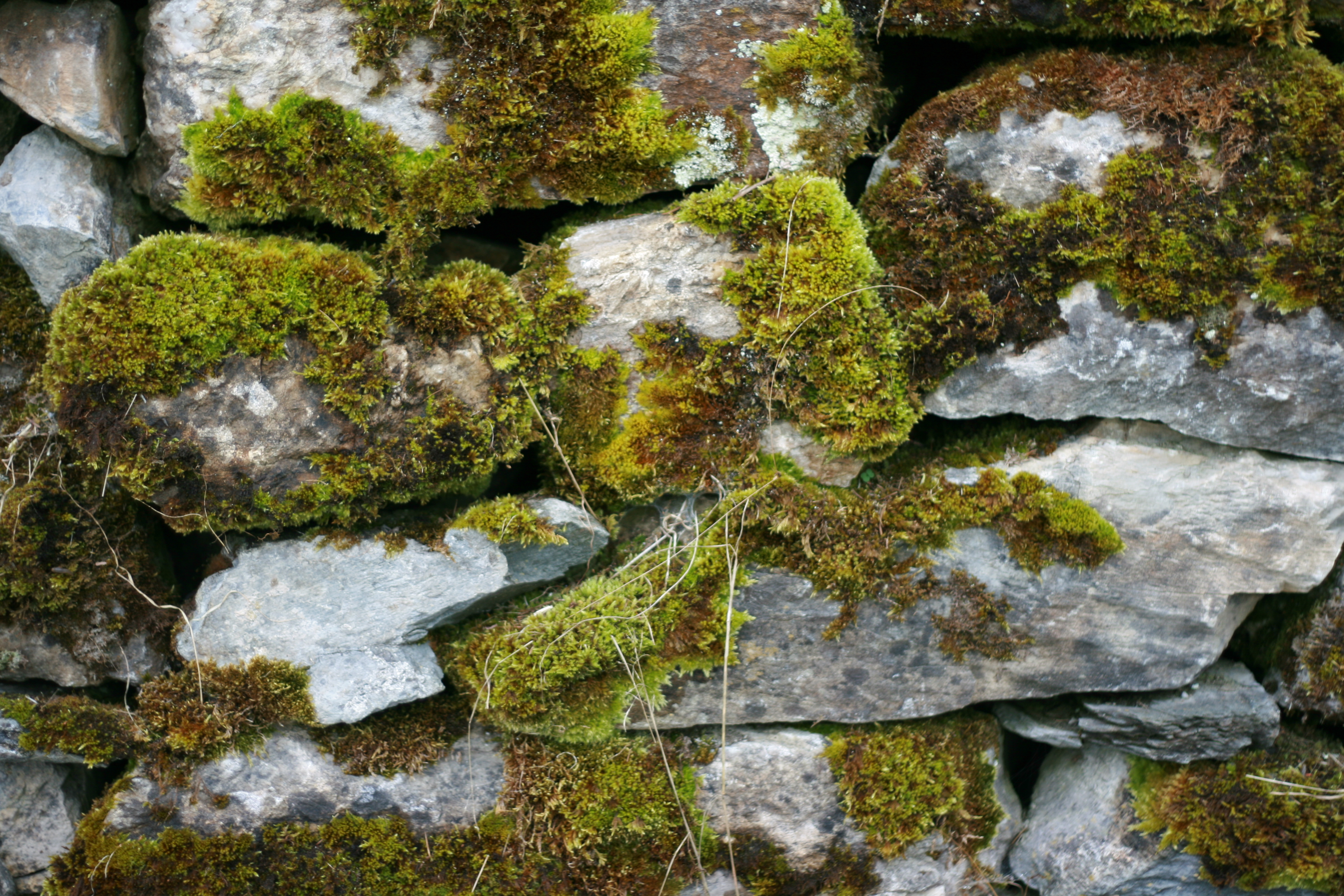 High Res Stone : Free stone texture pack volume high resolution textures
