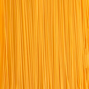 food-textures-04-spaghetti-pasta-texture