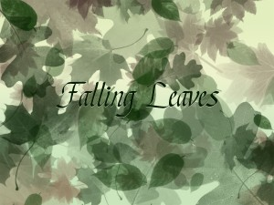 Falling Leaves