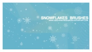 brushes Snowflakes